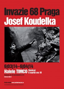 tm_leaflet-1