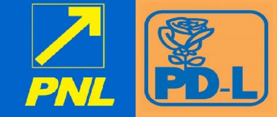 PNL PDL