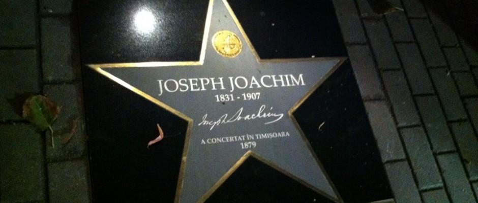 stea joseph joachim