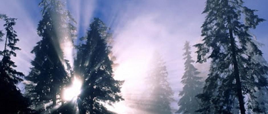 soare iarna
