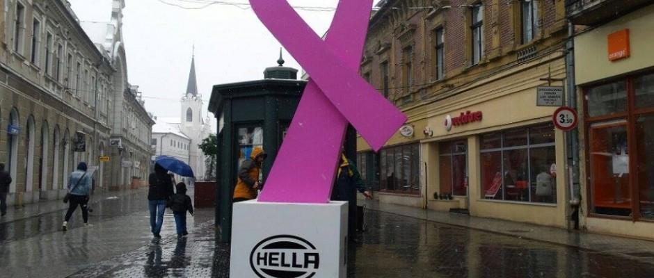 funda roz campania help25