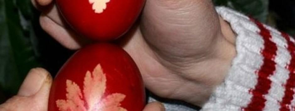 campionat de ciocnit oua