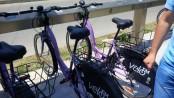 biciclete ratt