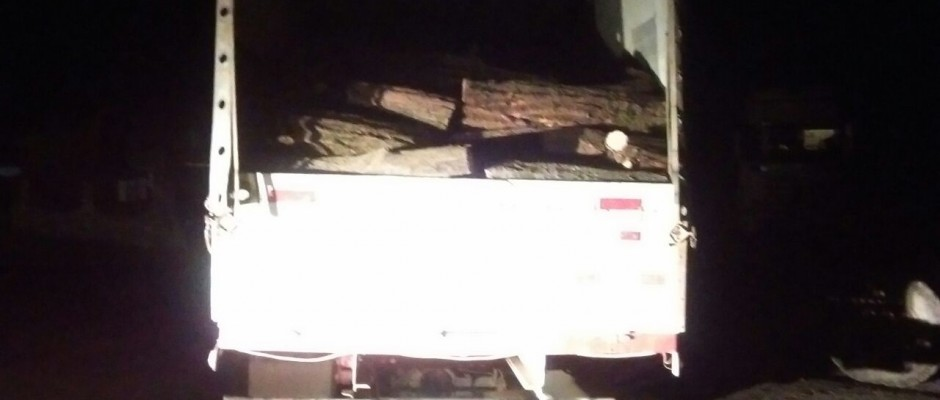 foto material lemnos confiscat