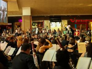 Iulius Mall Timisoara 01